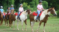 Horseback riding at Anne Springs Close Greenway